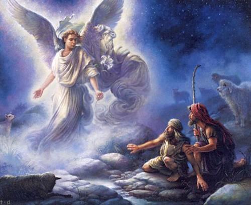 angel-shepherds